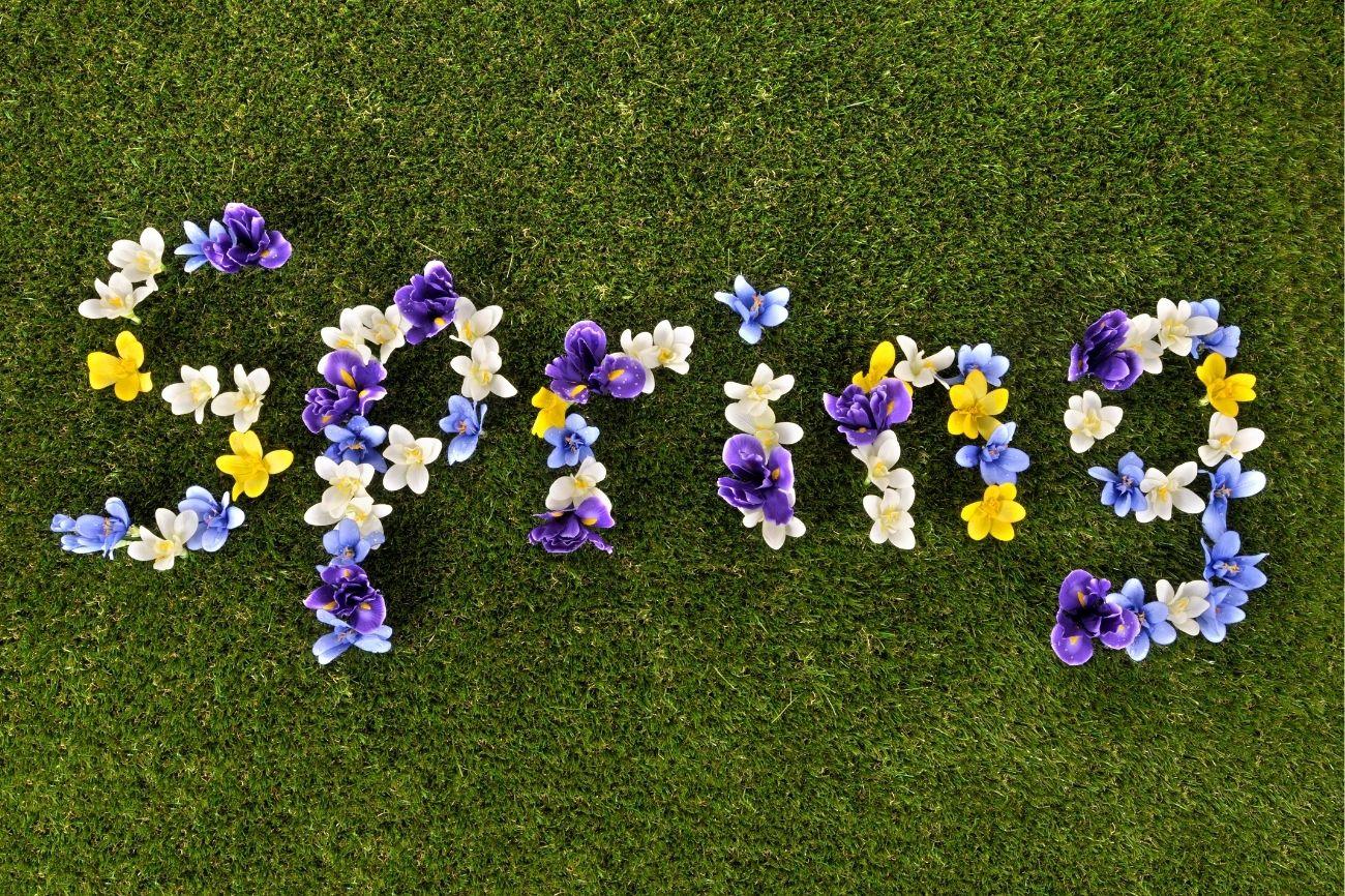 10 Modismos en inglés que son tendencia en primavera